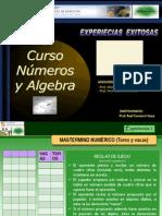 ExperienciasExitosas_NúmerosAlgebraFinal