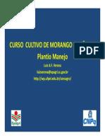 Curso Cultivo de Morango Orgânico Plantio e Manejo
