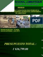 Presentacion Proyecto Ganaderia 20-05-2014