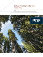 The Chilean Forestry Sector and Associated Risks
