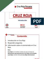 Introducción en Cruz Roja (ICR)