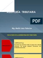 AUDITORIA TRIBUTARIA 2