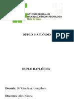 Duplos Haplóides
