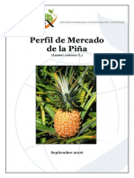 Perfil Pina