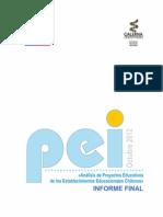Estudio PEI Informe Final