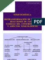 T 04. Biotransformacion.pdf
