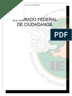El jurado federal de ciudadanos.doc
