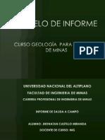 Modelo de Informe de Campo