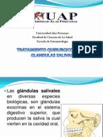 Tratamiento Quirurgico de Glandulas Salivales