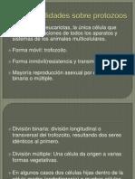 Protozoarios Parasitos Del Aparato Digestivo