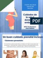 Cuidados Signos de Alarma en La Embarazada