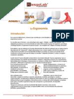 La Resolución 295-03 y La Historia de La Ergonomia en Argentina - Riesgolab