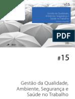GestaodaQualidade,Ambiente,SegurancaeSaudenoTrabalho15