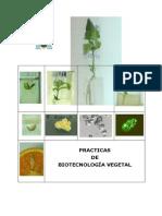 Cuaderno Pract Biotec 11 OCW