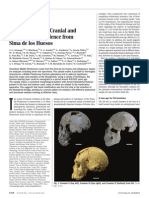 Neandertal Roots, Cranial and Chronological Evidence From Sima de Los Huesos