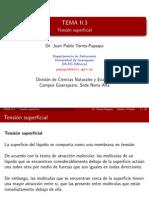 Tension Superficial.pdf