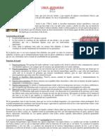 Cmq IV - Quemaduras(2)