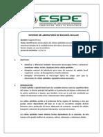 Informe Celulas Epiteliales Procariotes Corregido