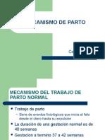 MECANISMO DE PARTO_PRESENTACION