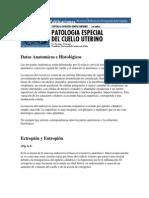 Datos Anatomicos e Histológicos