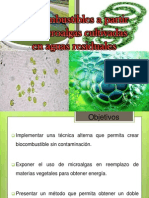 botecnologi123.pptx