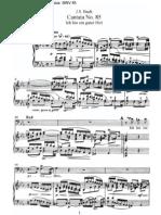 Bach Bwv 085
