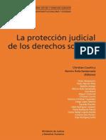8_Proteccion_judicial de Los Derechos Sociales