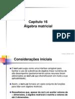 Cap16 Algebra Matricial
