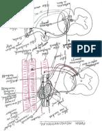 2012_05_15_12_40_39.pdf