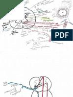 2012_05_15_12_34_31.pdf