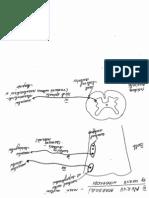 2012_05_15_12_37_28.pdf