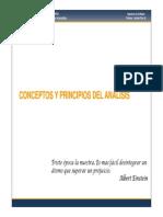 06 - Conceptos y Principios Del Analisis