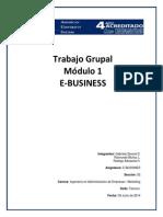 Rodrigo Adriazola TGNº1 E-business