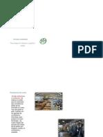Procesos y Procedimientos de Las Curtiembres 2011