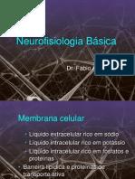 3 Neurofisiologia Basica (1)