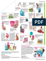 Mid June Brochure One-Page Flyer-English