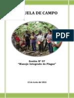 ESCUELA DE CAMPO - N° 07