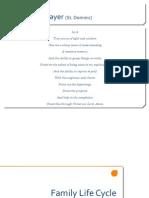 Family Life Cycle 2012 (Print Version)