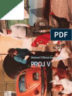 Proj V(print)