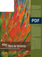 Atlas de La Flora de Veracruz