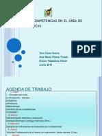 cursocompetencias2011[1]