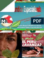 El trabajo de la Procuraduría Antidrogas en Perú