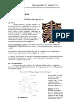 Unidad Nº 5 Fisiología del Buceo 2003