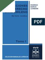 Barcia Lehmann, Rodrigo; Lecciones de Derecho Civil Chileno, Tomo I, Del Acto Jurídico