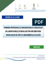 59497 A1_.4 Ursaciuc