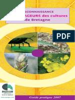Guide Reconnaissance Ravageurs Des Cultures de Bretagne2007