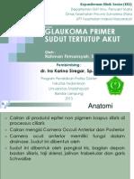 A.referat Glaukoma
