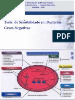 19-teste_+sensibilidade_bacterias_gram_negativas_eliete