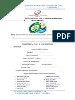 Formato de La Etapa 04 Informe Final 2013