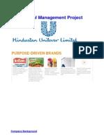Corporate Finance - HUL Project Report V1